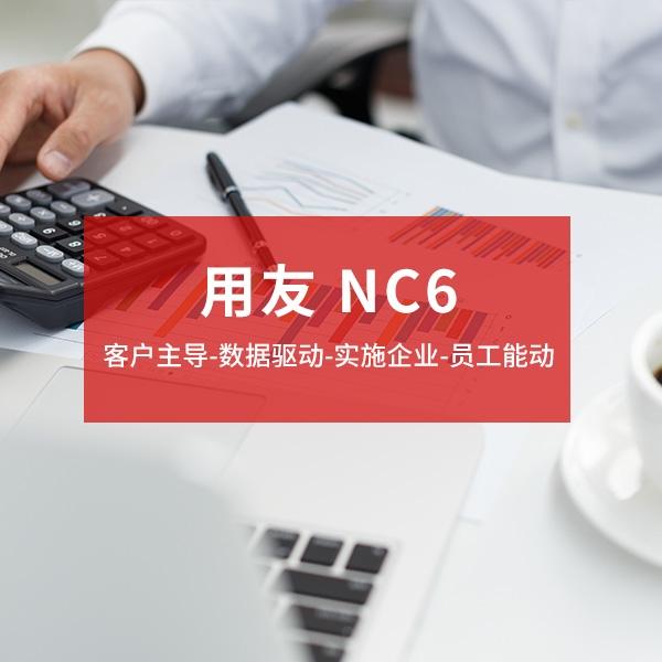 用友 NC6 大型企业管理与电子商务平台